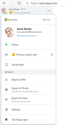 Web Skype Profile and status