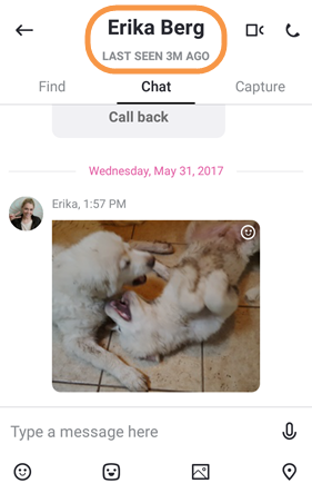 Offline status in the new Skype