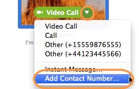 オプションメニューで「コンタクトの番号を追加…」オプションが選択された状態のスクリーンショット。相手のピクチャの上にマウスのカーソルを置いて、表示される緑色の通話ボタン上にある下向きの矢印をクリックすると、メニューが表示されます。