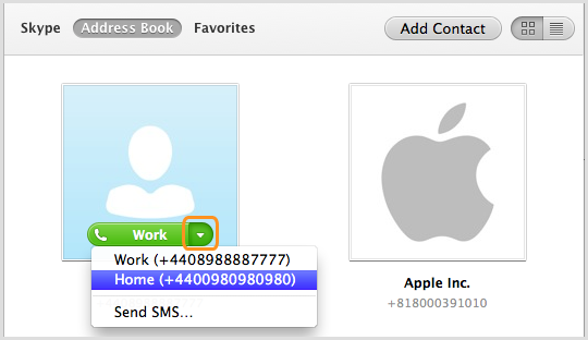 Screenshot of the contact selected in the Address Book in Skype and the phone number of that contact