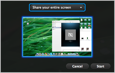The Share your entire screen option and the screen to be shared selected.