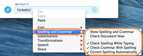 As opções a serem selecionadas para ativar o corretor ortográfico.