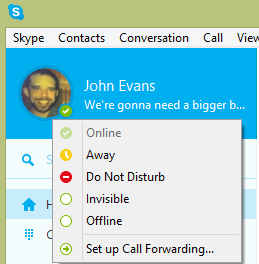 Various status icons displayed next to the Skype Name.