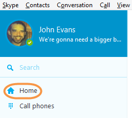 The Skype Home icon selected in the Skype toolbar.